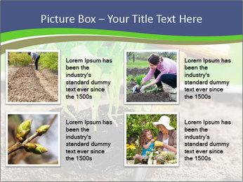 Turnip cabbage PowerPoint Template - Slide 14