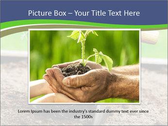 Turnip cabbage PowerPoint Template - Slide 16