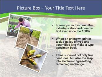 Turnip cabbage PowerPoint Template - Slide 17