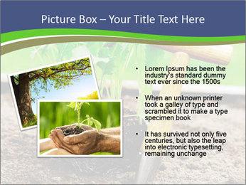 Turnip cabbage PowerPoint Template - Slide 20