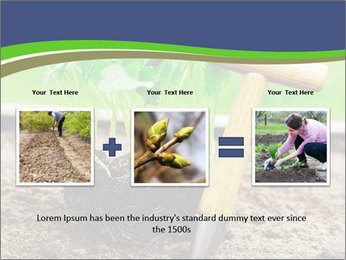 Turnip cabbage PowerPoint Template - Slide 22