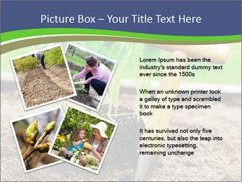 Turnip cabbage PowerPoint Template - Slide 23