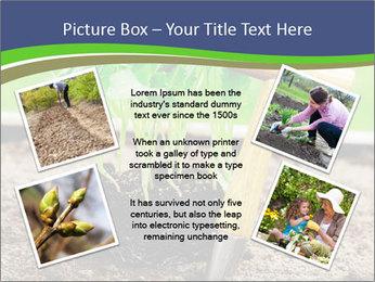 Turnip cabbage PowerPoint Template - Slide 24