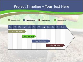 Turnip cabbage PowerPoint Template - Slide 25