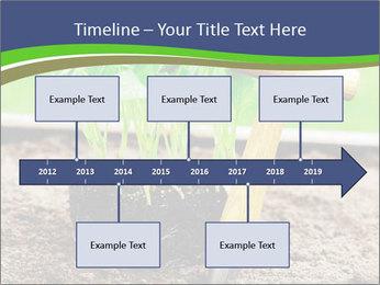 Turnip cabbage PowerPoint Template - Slide 28