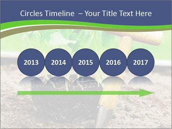 Turnip cabbage PowerPoint Template - Slide 29