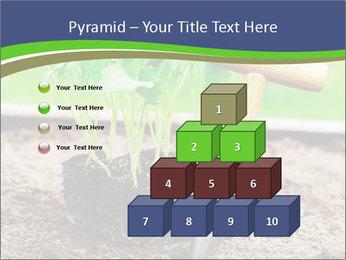 Turnip cabbage PowerPoint Template - Slide 31