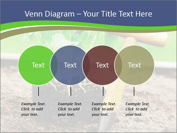 Turnip cabbage PowerPoint Template - Slide 32