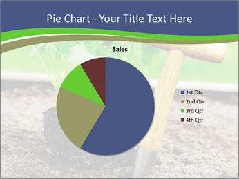 Turnip cabbage PowerPoint Template - Slide 36