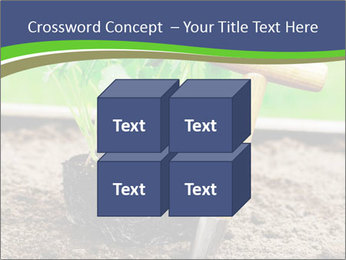Turnip cabbage PowerPoint Template - Slide 39