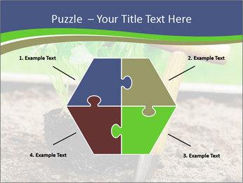Turnip cabbage PowerPoint Template - Slide 40