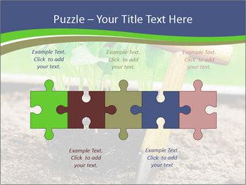 Turnip cabbage PowerPoint Template - Slide 41