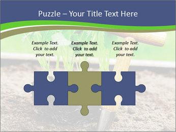 Turnip cabbage PowerPoint Template - Slide 42