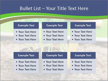 Turnip cabbage PowerPoint Template - Slide 56