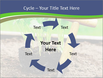 Turnip cabbage PowerPoint Template - Slide 62