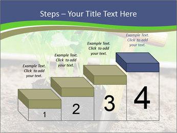 Turnip cabbage PowerPoint Template - Slide 64