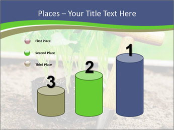 Turnip cabbage PowerPoint Template - Slide 65