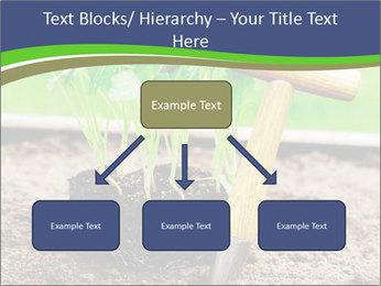 Turnip cabbage PowerPoint Template - Slide 69