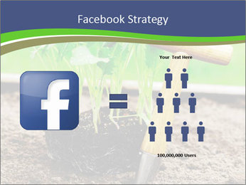 Turnip cabbage PowerPoint Template - Slide 7