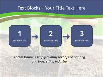 Turnip cabbage PowerPoint Template - Slide 71