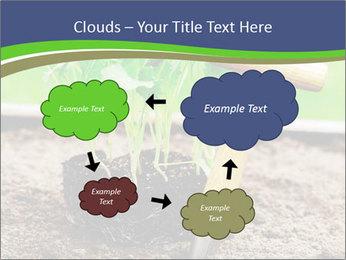 Turnip cabbage PowerPoint Template - Slide 72