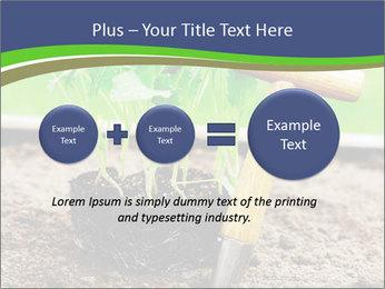 Turnip cabbage PowerPoint Template - Slide 75