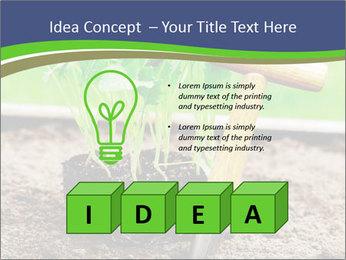 Turnip cabbage PowerPoint Template - Slide 80