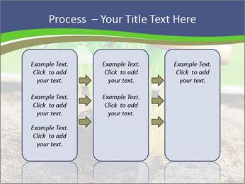 Turnip cabbage PowerPoint Template - Slide 86