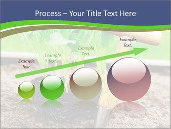 Turnip cabbage PowerPoint Template - Slide 87