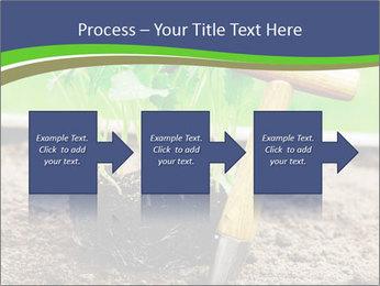 Turnip cabbage PowerPoint Template - Slide 88