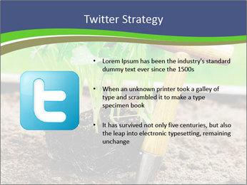 Turnip cabbage PowerPoint Template - Slide 9
