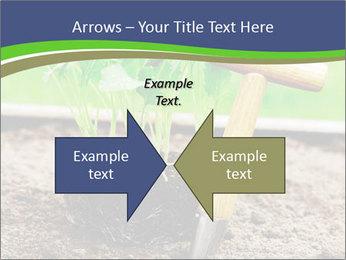 Turnip cabbage PowerPoint Template - Slide 90