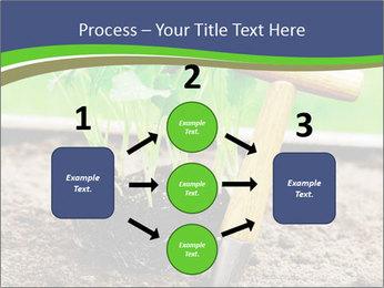 Turnip cabbage PowerPoint Template - Slide 92