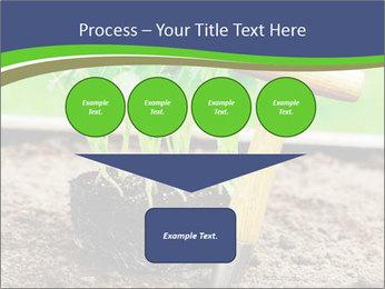 Turnip cabbage PowerPoint Template - Slide 93