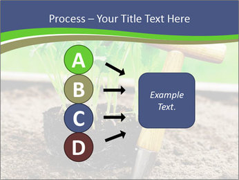 Turnip cabbage PowerPoint Template - Slide 94