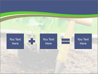 Turnip cabbage PowerPoint Template - Slide 95
