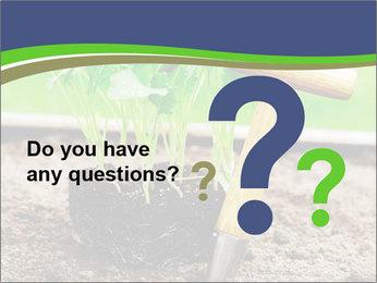 Turnip cabbage PowerPoint Template - Slide 96