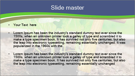 Turnip cabbage PowerPoint Template - Slide 2