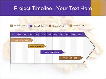 Walnut PowerPoint Template - Slide 25