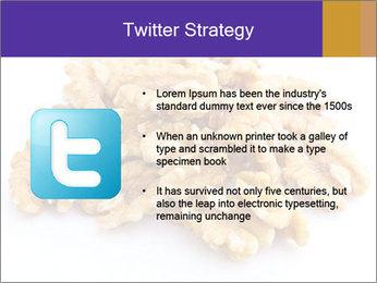 Walnut PowerPoint Template - Slide 9