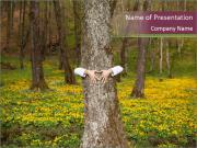 Tree in forest PowerPoint Templates