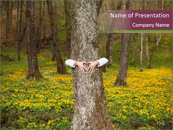 Tree in forest PowerPoint Template - Slide 1