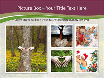 Tree in forest PowerPoint Template - Slide 19