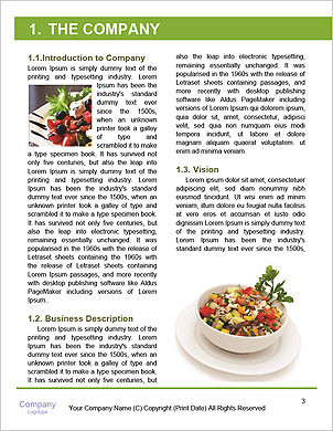 0000092454 Word Template - Page 3