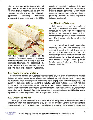 0000092454 Word Template - Page 4
