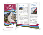 0000092457 Brochure Template
