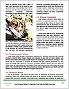 0000092461 Word Templates - Page 4