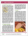 0000092465 Word Templates - Page 3