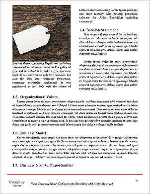 0000092473 Word Template - Page 4