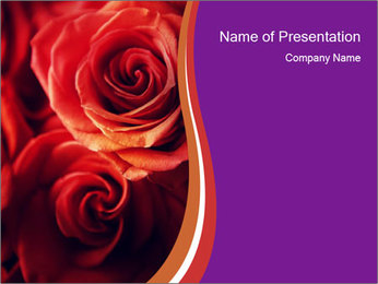 0000092474 PowerPoint Template